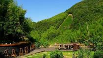 Two Days Mogan Mountain & Anji Bamboo Forest Family Fun And Leisure Tour, Hangzhou, Multi-day Tours
