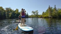 Stand-Up Paddle Board on the Raquette River and The Wild Center General Admission, Albany, Stand Up ...