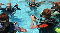 Open Water Scuba Certification, Oahu, Scuba Diving