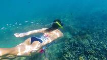 Kornati islands snorkeling excursion and 1 day free SUP boards, Zadar, Day Trips