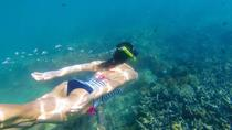 Kornati islands snorkeling excursion and one day free bikes, Zadar, Day Trips
