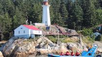 Vancouver City and Seals Scenic Boat Tour, Vancouver, Day Cruises
