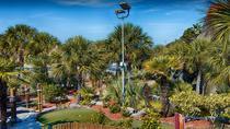Hawaiian Rumble All Day Mini Golf Pass, Myrtle Beach, Attraction Tickets