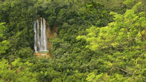 El Limón Waterfall and Plantation Tour from Samaná, Samaná, Half-day Tours