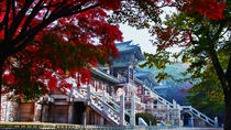 3-Day Tour of Eastern Korea from Busan to Seoul, Busan, Cultural Tours