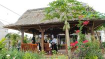 Local Market Tour and Vietnamese Cooking Class, Hoi An, Cooking Classes