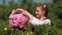 The Valley of the Roses, Sofia, Full-day Tours