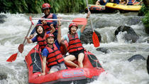 Ayung River Rafting, and Kintamani Volcano Tour with Lunch, Kuta, Private Day Trips