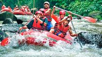 Ayung River Rafting, Ubud Tour, Tanah Lot Temple Tour, Ubud, 4WD, ATV & Off-Road Tours