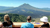 Private Tour: Waterfall, Kintamani Volcano, Ubud Tour with Lunch, Bali, Private Day Trips