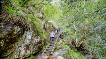 Skeleton Gorge hike - Sunrise Hike, Cape Town, Hiking & Camping