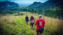 Small-Group Hiking Adventure Including Lunch with a Local Family from Nadi, ナンディ