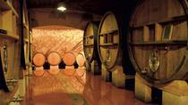 Private Côtes du Rhône wine tour - Gigondas and Châteauneuf du Pape, Marseille, Wine...
