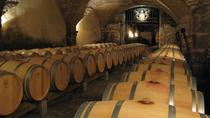 Private Day Trip to Avignon, Pont du Gard, Orange and Chateauneuf du Pape Wine Tour from...