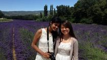 Private Tour: Provence Day Trip in the Footsteps of Peter Mayle from Aix-en-Provence,...