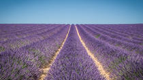 Provence photography tour and class with a professional local guide-photographer, Marseille,...