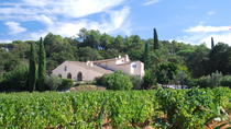Provence Wine Workshop from Marseille, Marseille, Wine Tasting & Winery Tours