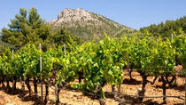 Wine tour in Coteaux d'Aix en Provence from Marseille, Marseille, Wine Tasting & Winery Tours