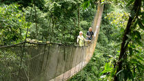 Rainmaker Park Hanging Bridges & Waterfalls Tour, Quepos, 4WD, ATV & Off-Road Tours