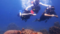 5-Day PADI Open Water Diving Certification Course in Koh Tao - Introductory Level, Surat Thani,...