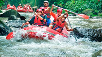 Ayung River Rafting - True Bali Experience, Kuta, 4WD, ATV & Off-Road Tours