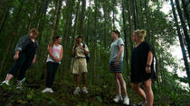 Rain Forest Trekking - True Bali Experience, Seminyak, 4WD, ATV & Off-Road Tours