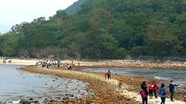 ROCK ACADEMY - SAI KUNG VOLCANIC ROCK REGION, Hong Kong SAR, Nature & Wildlife