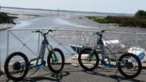 Arcachon Bay's Tour riding the future, Arcachon, Day Trips