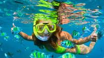Pearl Islands Snorkeling Adventures, Panama City, Day Trips