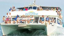 Whale Watching Adventure of a Life Time, Panama City, Dolphin & Whale Watching