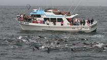 2 Hour Special Event Cruises - Up to 69 People, Monterey & Carmel, Day Cruises
