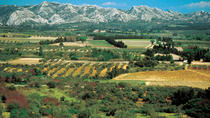 Alpilles Day Trip from Avignon Including St Rémy de Provence, Les Baux de Provence and Lunch, ...
