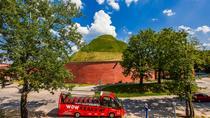 Day Ticket to Wow Krakow Hop on Hop off bus & Gondola Cruise, Krakow, Hop-on Hop-off Tours