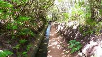Private VIP Service Madeira Walking Hiking Levada do Alecrim, Funchal, Hiking & Camping
