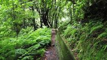 Private VIP Service Madeira Walking Hiking Levada do Rei, Funchal, Hiking & Camping