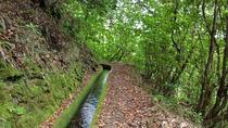 Private VIP Service Madeira Walking Hiking Levada dos Tornos Boaventura, Funchal, Hiking & Camping