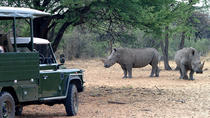 1 Day Okapuka Game Ranch Tour-Namibia, Windhoek, Day Trips
