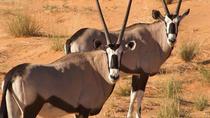 10 Days Wilderness Safari Namibia (Camping), Windhoek, Hiking & Camping
