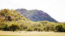 2 Days Wildlife Erindi Game Range (Camping) Namibia, Windhoek, Hiking & Camping