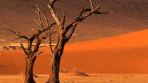 3 Days Sossusvlei Safari Tours (Accommodated), Windhoek, 4WD, ATV & Off-Road Tours