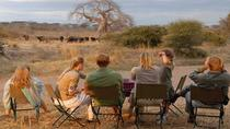 6 Day Best of Northern Namibia (Accommodated), Windhoek, Multi-day Tours
