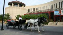 Nashville Carriage Ride, Nashville, Horse Carriage Rides