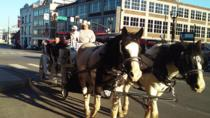 Nashville Carriage Ride, Nashville, null