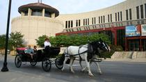 Private Downtown Nashville Carriage Tour, Nashville, Horse Carriage Rides