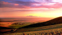 Cape Town: Beer & Wine Foodie Adventure Tour to Darling, Cape Town, 4WD, ATV & Off-Road Tours