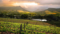 Cape Town: Cape Winelands Full Day Tour with Wine & Cheese Tastings, Cape Town, Full-day Tours