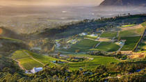 Cape Town: Hike Table Mountain & Wine Tasting Tour Full Day, Cape Town, Hiking & Camping