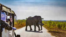 5-Day Kruger National Park, Johannesburg, Attraction Tickets