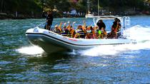 Los Veranos Canopy Sea Departure Excursion, Puerto Vallarta, Airport & Ground Transfers