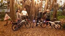 Weekend Brisbane City Lights Electric Bike Tour, Brisbane, Bike & Mountain Bike Tours